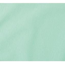 фото Набор из 2-х наволочек ТексДизайн с клапаном. Цвет: мятный. Размер наволочки: 50х70 см — 2 шт