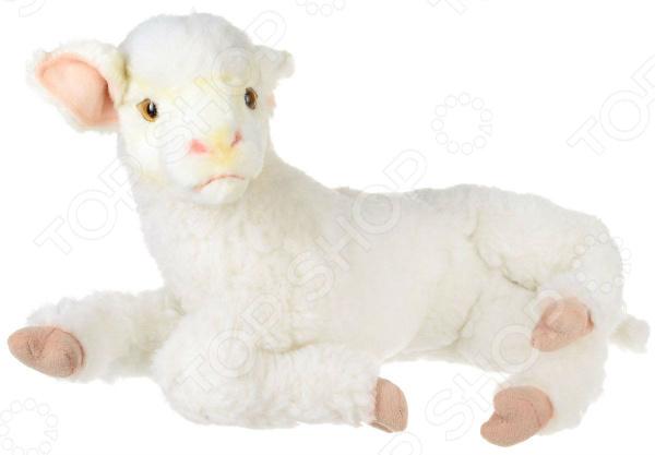 Мягкая игрушка Hansa «Ягненок белый лежащий»Мягкие игрушки<br>Реалистичные мягкие игрушки от популярного бренда Hansa отличный способ познакомить вашего ребенка с разнообразием животного мира. Благодаря качественной и тщательной проработки дизайна все игрушки выглядят как настоящие, поэтому игра с ними будет не только развлекательной, но и познавательной. Ваш ребенок научится различать разные виды животных, познакомится с местами их обитания и правилами ухода за ними. Такие реалистичные игрушки великолепное решение для сюжетных игр! Замечательный мягкий друг для вашего ребенка! Мягкая игрушка Hansa Ягненок белый лежащий красивый и очаровательный подарок для вашего ребенка! Игрушка выполнена в виде очаровательного белого ягненка. Мягкую, симпатичную игрушку очень приятного гладить и держать в руках, поэтому с ее помощью малыш сможет развить хватательные рефлексы и мелкую моторику рук. Ягненок выполнен из высококачественных материалов, которые совершенно безопасны для детского здоровья. Его мягкая пушистая шкурка выполнена из искусственного меха, который не будет вызывать аллергии у ребенка.  Мягкая игрушка обладает рядом особенностей, которые делают ее идеальным выбором для вашего ребенка:  легкий проволочный каркас, который позволяет придавать игрушке различные позы;  набита гипоаллергенным полиэфирными волокнами;  пластиковая фурнитура не принесет вред ребенку;  оптимальный размер сделает игру очень реалистичной.  Главное достоинство этой игрушки заключается в удивительной реалистичности. Естественный окрас и поза, приятная фактура делают игрушку похожей на настоящего ягненка со всеми его особенностями мягкой мордочкой, приятной шерсткой. Такая детализация стала возможна благодаря тому, что игрушки шьются и набиваются вручную.<br>