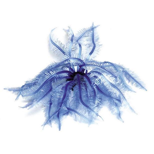 фото Мягкий коралл DEZZIE «Тритон»