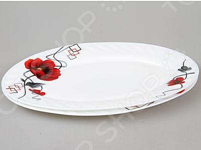 Zakazat.ru: Набор тарелок Rosenberg 1222-619