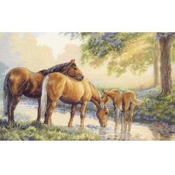 Купить Набор для вышивания Dimensions «Лошади у источника»