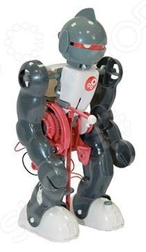 Набор для исследования JoyD «Робот - акробат»Наборы для исследования и опытов<br>Набор для исследования JoyD Робот - акробат оригинальная и увлекательная игра, с помощью которой ребенок сможет сконструировать настоящего робота-акробата, умеющего ходить, падать и подниматься без посторонней помощи. Требуется лишь правильно его собрать, и тогда робот сможет станцевать и сделать непрерывное сальто. При падении акробат сможет подняться без посторонней помощи. Это происходит благодаря 3-м датчикам на животе, спине и ногах.<br>