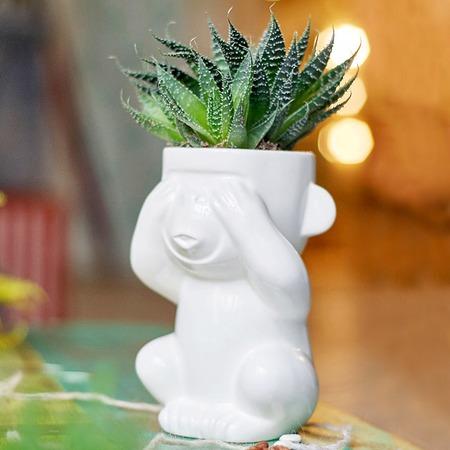 Купить Горшок для растений Экочеловеки Eco «Слепыш»