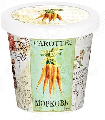 Набор для выращивания Rostokvisa «Морковь»