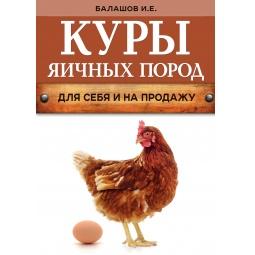 фото Куры яичных пород