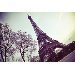 Купить Фотообои ARD Maximage «Эйфелева башня»