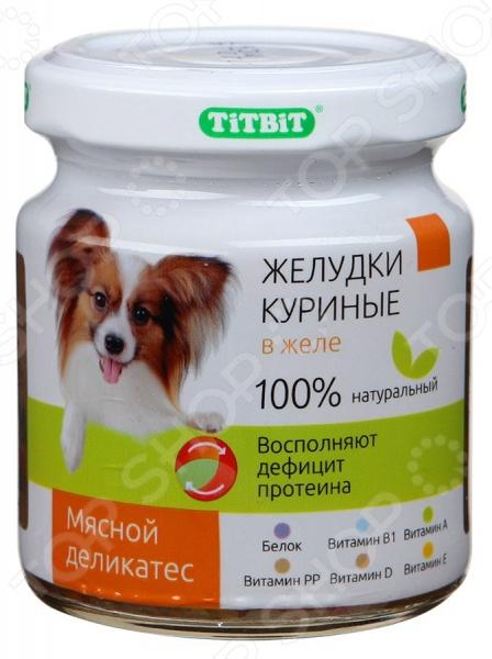 Корм консервированный для собак TiTBiT с желудками куриными в желеВлажные корма<br>Корм консервированный для собак TiTBiT с желудками куриными в желе полноценное и сбалансированное питание для вашего питомца. Рацион изготовлен из отборных ингредиентов и обогащен всеми необходимыми витаминами и ферментами. Он полностью удовлетворяет потребность животных в энергии и восполняет дефицит протеина. В состав рациона входит:  легкоусвояемый белок является строительным компонентом мышечной ткани, благотворно влияет на развитие мозга;  витамин А способствует улучшению зрения и поддержанию нормального состояния кожи и шерсти;  витамин D способствует укреплению костной и хрящевой ткани, препятствует развитию кожных заболеваний;  витамин Е способствует нормализации репродуктивной функций организма;  витамин В1 улучшает циркуляцию крови и участвует в кроветворении;  витамин РР участвует в клеточном дыхании и регулирует уровень холестерина в крови. Состав: желудки куриные, вода, желеобразователь, сладкий перец, лук, морковь, морская капуста. Пищевая ценность: протеин 14,7 г , жиры 4,5 г , углеводы 1,7 г , зола 1,0 г , клетчатка 0,2 г , влага 76,8 г . Энергетическая ценность: 96 ккал на 100 грамм продукта.<br>