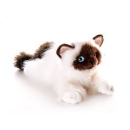 Купить Мягкая игрушка AURORA «Кошка сиамская» 30 см