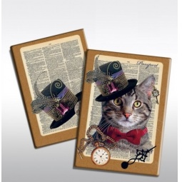 фото Обложка для паспорта Феникс-Презент «Кот»