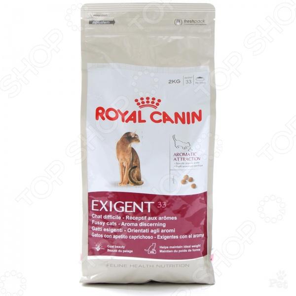 Корм сухой для привередливых кошек Royal Canin Exigent 33 Aromatic AttractionСухой корм<br>Корм сухой для привередливых кошек Royal Canin Exigent 33 Aromatic Attraction полноценный и комплексный рацион для вашего питомца. Высокий уровень питательности и усвояемости, оптимальное содержание всех необходимых веществ, витаминов и антиоксидантов делают этот корм идеальным решением для кошек с особо требовательным отношением к еде и её содержимому. Корм включает в себя только ингредиенты натурального происхождения, а оригинальный и высокопривлекательный ароматический комплекс понравится даже самым привередливым и капризным кошкам. Сбалансированное сочетание белков, жиров и минералов делает корм максимально полезным для питомца, так как позволяет поддерживать его стабильный вес. Корм обогащен биотином и маслом огуречника аптечного, что способствует красивой, ухоженной и здоровой шерсти. Как перевести кошку на новый сухой корм Royal Canin Exigent 33 Aromatic Attraction. Если вы решили начать кормить питомца кормом Royal Canin Exigent 33 Aromatic Attraction, это следует делать постепенно. Чтобы кошка быстрее усвоила новый вид корма, смешайте привычное для неё питание с хрустящими гранулами. В последующие 7 дней понемногу увеличивайте содержание сухого корма, до тех пор пока она полностью не перейдет на него. Норма кормления. Для нормального самочувствия вашей кошки следует придерживаться следующей рекомендуемой суточной нормы:       Вес кошки кг     2     3     4     5       Количество корма г     30     45     60-65     75-80    Внимание! Всегда следите за тем, чтобы у вашей кошки была чистая и свежая вода в миске.<br>