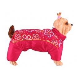 Купить Комбинезон-дождевик для собак DEZZIE «Вест-хайленд-уайт-терьер». Цвет: красный