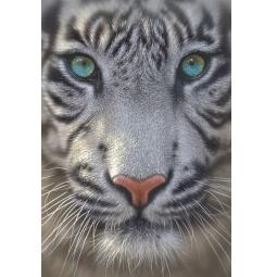 Купить Пазл 500 элементов Educa «Белый тигр»