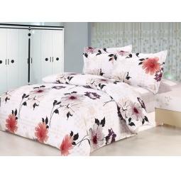 Купить Комплект постельного белья Softline 07839. 2-спальный
