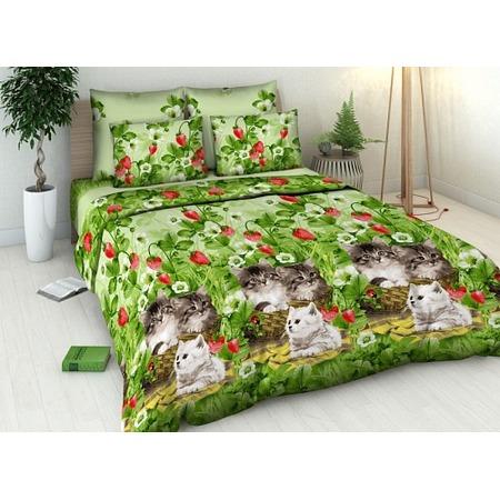 Купить Комплект постельного белья Василиса «Котята». 1,5-спальный
