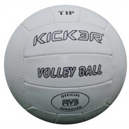 фото Мяч волейбольный Larsen Kicker Tip