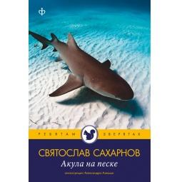 фото Акула на песке