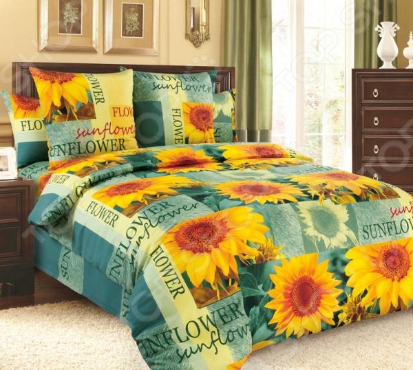 Комплект постельного белья Белиссимо «Солнечный цветок». 2-спальный2-спальные<br>Комплект постельного белья Белиссимо Солнечный цветок - красивое и качественное постельное белье, которое подарит вам крепкий и здоровый сон. Качественный отдых - залог вашего здоровья, поэтому важно правильно подобрать постельное белье на котором вы будете спать. Красивый дизайн и высокое качество - главные критерии при выборе постельного белья. Комплект выполнен из 100 хлопка - материала мягкого и приятного на ощупь. При изготовлении данной серии постельного белья, были использованы красители высшего качества, безопасные для здоровья и долговечные. Роскошное постельное белье очарует вас и великолепным образом преобразит вашу спальню.<br>