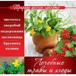 фото Лечебные травы и ягоды