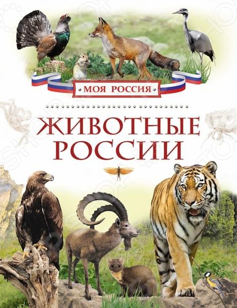 Животные. Растения. Природа Росмэн 978-5-353-07246-1 Животные России