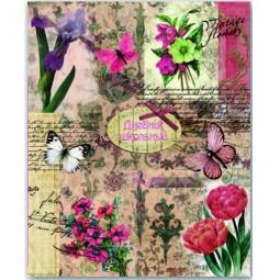 фото Дневник школьный Феникс «Коллаж с бабочками»