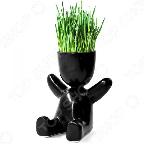 Набор для выращивания Экочеловеки Eco «Малыш»