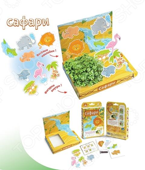 Набор для выращивания Happy Plant «Сафари» набор для выращивания eco победитель 1021368