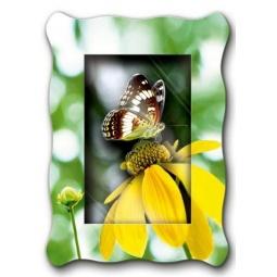 Купить Картинка объемная Vizzle «Бабочка Адмирал»