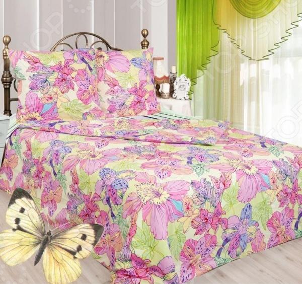 Комплект постельного белья Сова и Жаворонок «Мотылек» 19071/1 сумка elle es151m50904sg 1998