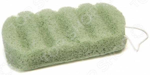 Губка для душа Bradex Konjac Sponge with barbados aloe «Сокровище Азии»