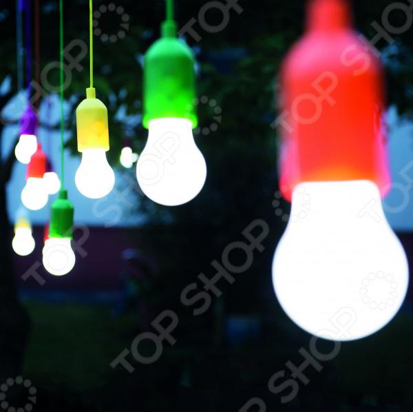 Zakazat.ru: Набор светильников Top Shop «Лампочки»