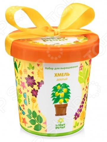 Набор для выращивания Happy Plant «Горшок. Хмель добрый»