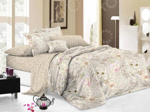 Zakazat.ru: Комплект постельного белья Cleo 022-PC. Евро