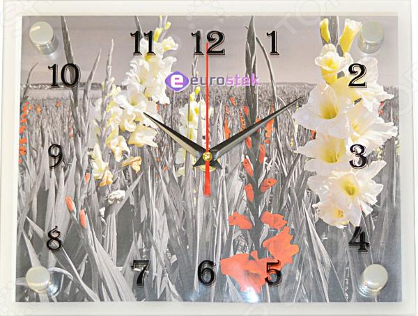 Часы настенные Eurostek 2026-461
