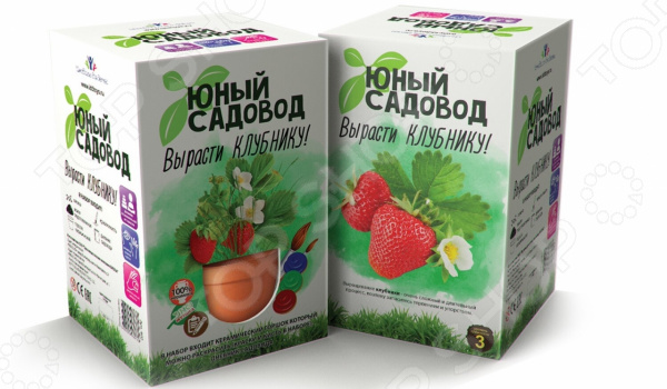 Набор для выращивания Юный Садовод «Вырасти клубнику»