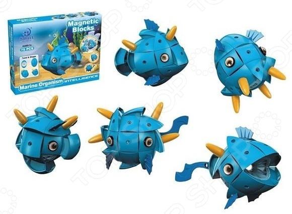 Конструктор магнитный Наша Игрушка «Морские обитатели» конструктор lego обитатели морских глубин 230 дет 31088