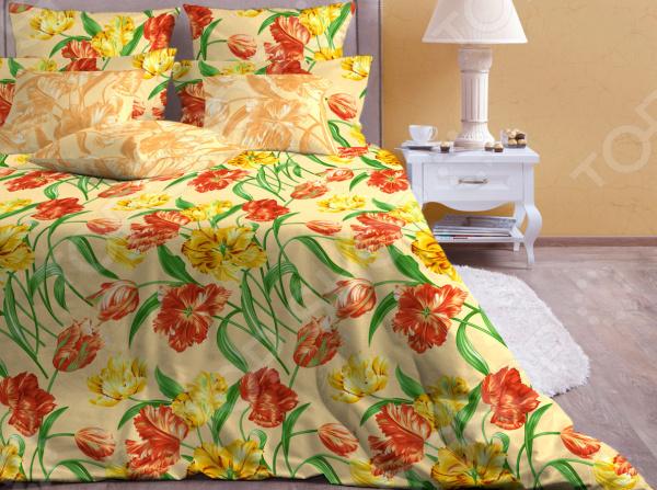 Zakazat.ru: Комплект постельного белья Хлопковый Край «Голландия» 5613/3. 1,5-спальный
