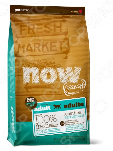 ���� ����� ��� ����� ������� ����� ����������� NOW Fresh Adult Large Breed Recipe Grain Free