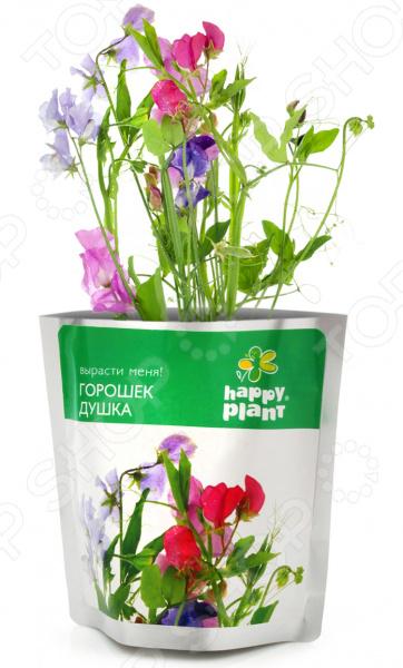 Набор для выращивания Happy Plants «Горошек душка»