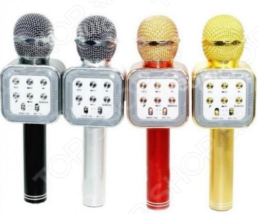 Микрофон для караоке WS-1818    /