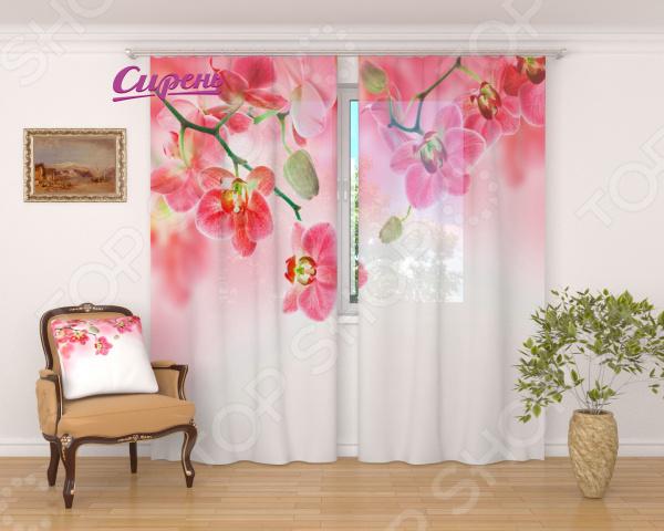 цена на Фототюль Сирень «Цветочный фон тропических орхидей»