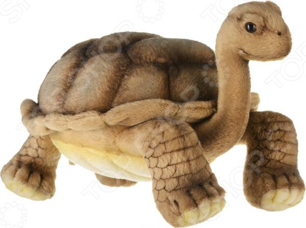 Мягкая игрушка Hansa «Галапагосская черепаха»