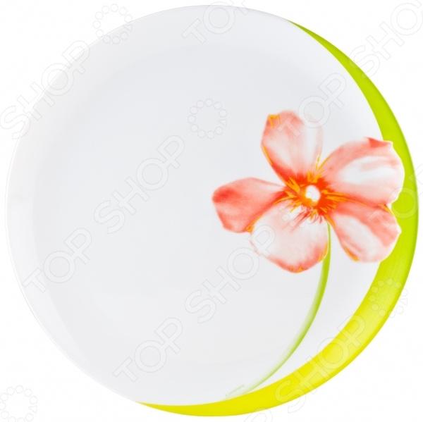 Тарелка Luminarc Sweet Impression тарелка обеденная luminarc sweet impression 25 см