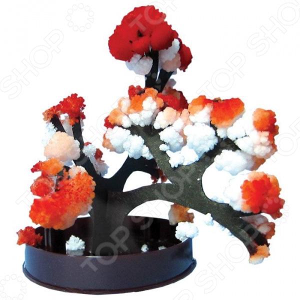 цены Набор для выращивания Ранок «Японский сад кристаллов. Японский клен»