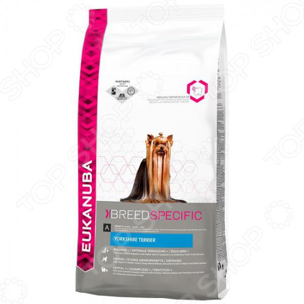 ���� ����� ��� ����� Eukanuba BreedSpecific Yorkshire Terrier