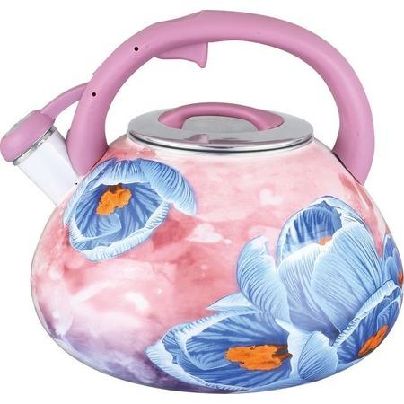 Купить Чайник эмалированный Чудесница ЭЧ-3505
