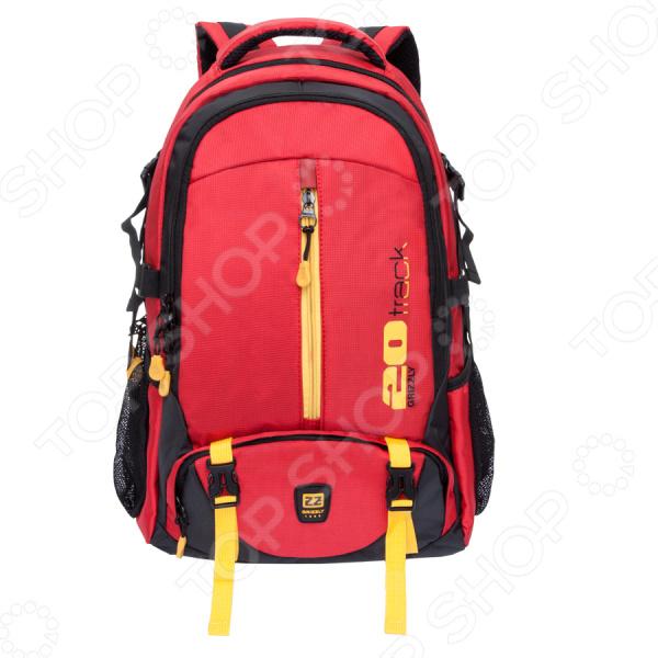Рюкзак молодежный Grizzly RU-708-2