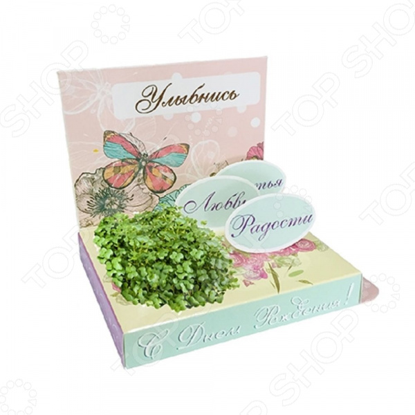 Набор подарочный для выращивания Happy Plants «С Днем рождения! Бабочка» набор подарочный для выращивания happy plants живая открытка букет роз