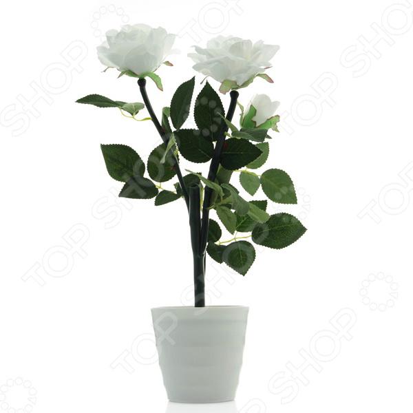 Настольная LED-лампа CТАРТ Роза 3 Светильник-ночник СТАРТ «Волшебные розы»
