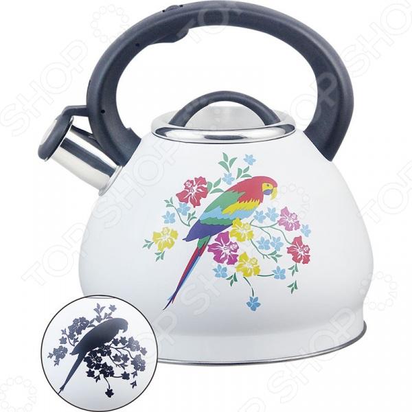 Чайник со свистком Rainstahl RS/WK 7628-30. В ассортименте чайник со свистком rainstahl 7600 27rs wk в ассортименте