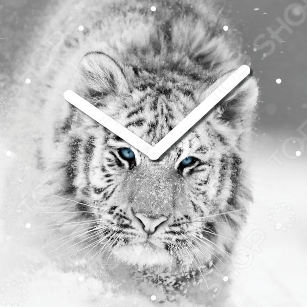 Часы настенные Innova «Белый тигр» W09660